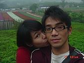 2008大溪花海:1154525927.jpg