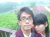 2008大溪花海:1154525928.jpg