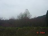 2009太平山之旅:1428007091-dsc04877.jpg