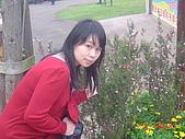 2008大溪花海:1154525932.jpg