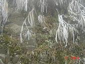 2009太平山之旅:1428007094-dsc04880.jpg