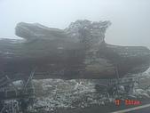2009太平山之旅:1428007096-dsc04882.jpg