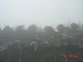 2009太平山之旅:1428007101-dsc04889.jpg