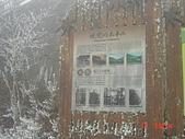 2009太平山之旅:1428007106-dsc04895.jpg