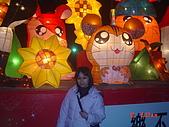 2008台北燈會:1295882738.jpg