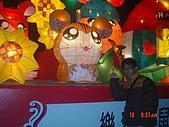 2008台北燈會:1295882739.jpg