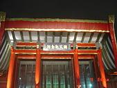 2008台北燈會:1295882741.jpg