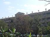 華山雲頂咖啡(2008_0120):到達目的地,東石高中