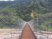 蹲蹲野桐:象鼻吊橋