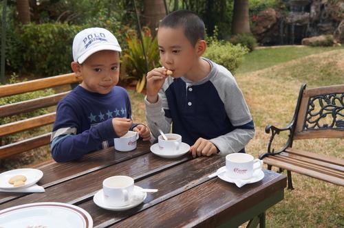 小孩也來偷喝 - 2018 0217 肯亞動物大驚奇 Day 7 - Coffee Plantatiion