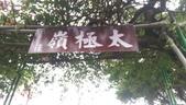 1040130~新北近郊賞櫻之 土城太極嶺:1040130-02-土城太極嶺064.jpg