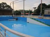 1030513~今夏第一游之 Good dog妙狗寵物游泳池:1030513-03-Good dog妙狗寵物游泳池006.JPG