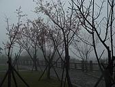 980227~春雨綿綿之金瓜石:980227-03-金瓜石033.JPG