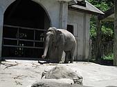 970707~台北市立動物園:970707-台北市立動物園023.JPG