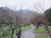 1040218~Happy Chinese New Year :1040219-02-黃金博物館029.JPG