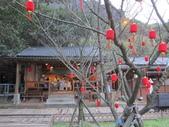 1040218~Happy Chinese New Year :1040219-02-黃金博物館012.JPG