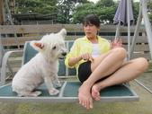 1030513~今夏第一游之 Good dog妙狗寵物游泳池:1030513-03-Good dog妙狗寵物游泳池033.JPG