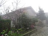 980227~春雨綿綿之金瓜石:980227-03-金瓜石048.jpg