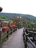 970411~竹子湖海芋花海季:970411-01-竹子湖034.JPG