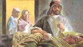 聖經圖片:多加.jpg