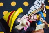 2019.07~09月:大豆芽社長 水產系列 指人形 4D 半解剖 小木偶 皮諾丘 (30).jpg