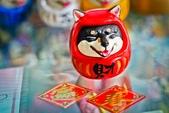玩具模型公仔:玩具獵人X當我們ㄍㄡˇ再一起 柴犬 不倒翁 動物達磨 達摩狗 (14).jpg