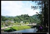 2010.10.31.大溪~慈湖:IMG_1432.JPG