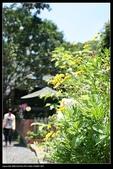 三義勝興車站.龍騰斷橋.鯉魚潭.大峽谷+天空之城:IMG_8581.jpg
