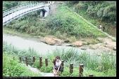 三義勝興車站.龍騰斷橋.鯉魚潭.大峽谷+天空之城:IMG_8622.jpg
