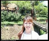 三義勝興車站.龍騰斷橋.鯉魚潭.大峽谷+天空之城:IMG_8549.jpg