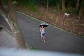 2016.07~09:2016.07.31嘉義太平老街&竹崎天空走廊.jpg (49).jpg