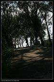 三義勝興車站.龍騰斷橋.鯉魚潭.大峽谷+天空之城:IMG_8652.jpg