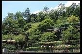 三義勝興車站.龍騰斷橋.鯉魚潭.大峽谷+天空之城:IMG_8540.jpg