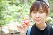 2017.04~06月:2017.04.16東勢林場.炸蝦貓 (18).jpg
