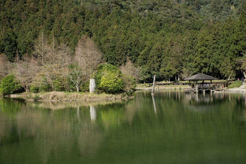 2019.01~03月:2019.02.03明池森林遊樂區 (9).jpg