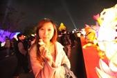 2012.02.05.彰化鹿港燈會:IMG_8222.jpg