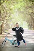 畢業快樂。藍花楹紫色大道: