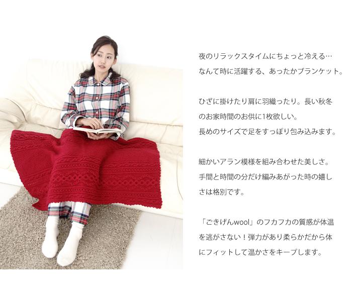 樂天:Z2009N-3麻花模樣毛毯.jpg