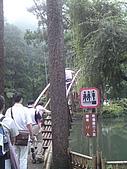 溪頭‧杉林溪:DSC00604_縮小大小.JPG