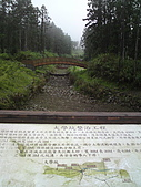 溪頭‧杉林溪:DSC00616_縮小大小.JPG