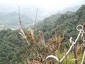 20091115平溪孝子山慈母峰:IMG_1053.JPG