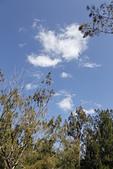 【台東】琵琶湖‧森林公園:_MG_4674.JPG