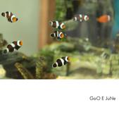 小丑魚館:1039485828.jpg