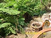 990331本鄉第一公墓墳墓沖毀請速妥善規劃排水設施-會勘:DSCI0127.JPG