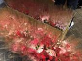 107.5.13母親節林口市場送康乃馨(活動):ceac4551535c3b0ec791eac8bc17cfeb0_10791026_180815_0008.jpg