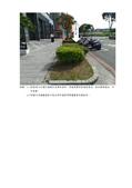 108年6月會勘:108070502016252-研商林口區呈冠禮樂公寓大廈管理委員會陳情「更換社區前人行道行道樹樹種並於空樹穴內補植櫻花樹」一