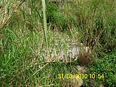 990331本鄉第一公墓墳墓沖毀請速妥善規劃排水設施-會勘:DSCI0138.JPG