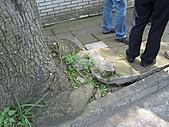 20110407林口區道路會勘西林里:IMG_0216 (Large).JPG