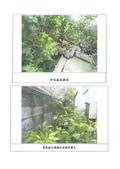108年6月會勘:108061001-1皇家夏宮-2.jpg