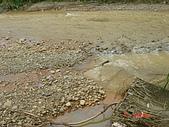 960609視察水患會勘照片:DSC03578.JPG